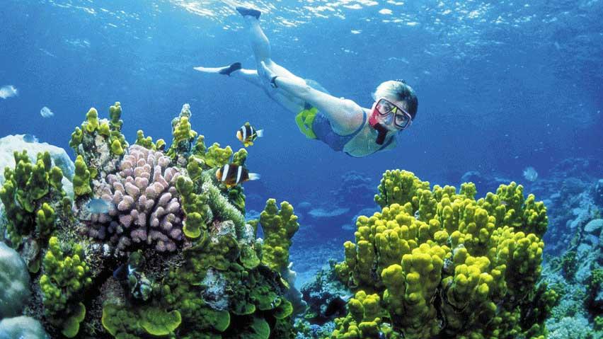 плуване в Австралия