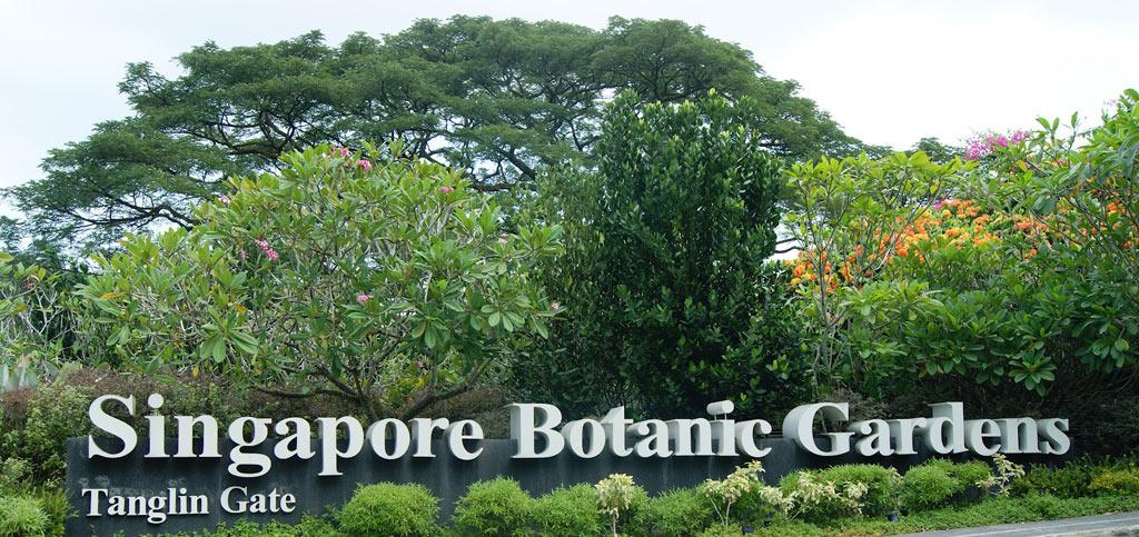 Ботаническа градина в Сингапур