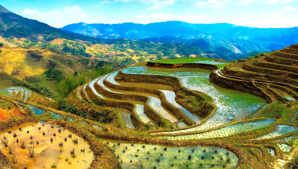 Оризови тераси - Филипини