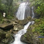 El-Yunque-National-Forest
